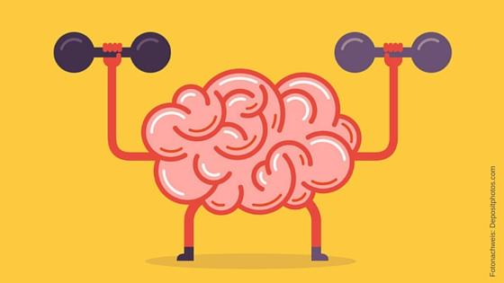 Gehirn-2
